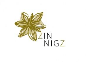 ZinZ logoDEF